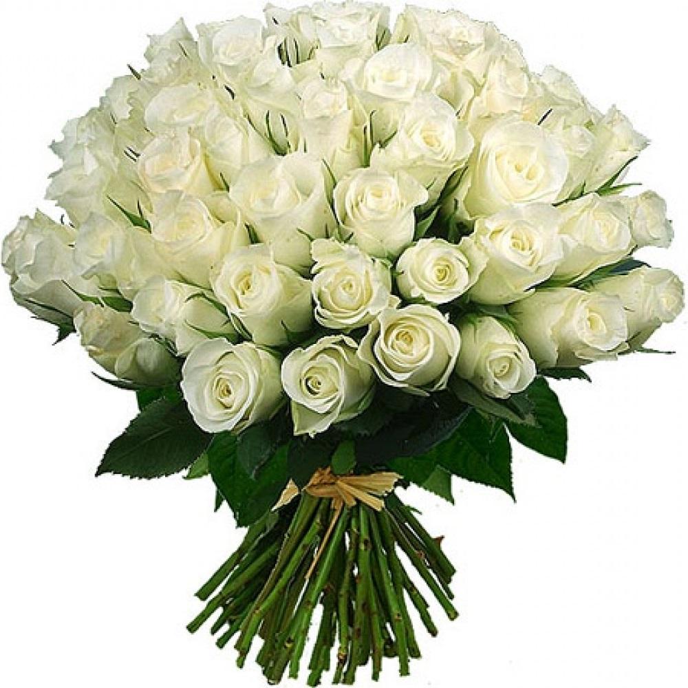 Открытки с белыми розами для девушки